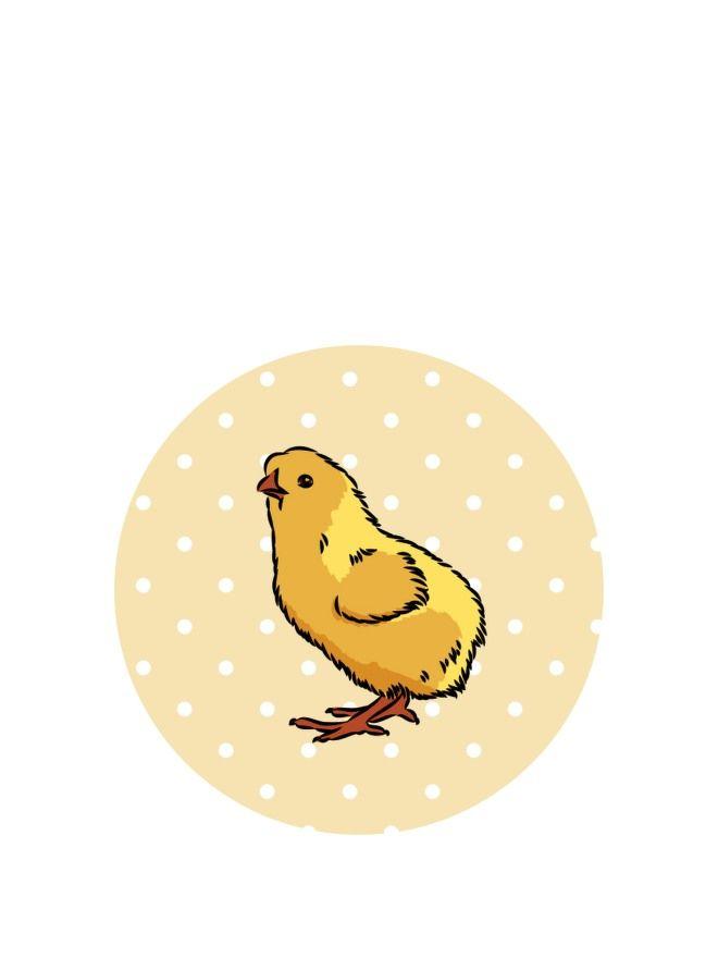 Lid Topper 40mm Little Chick